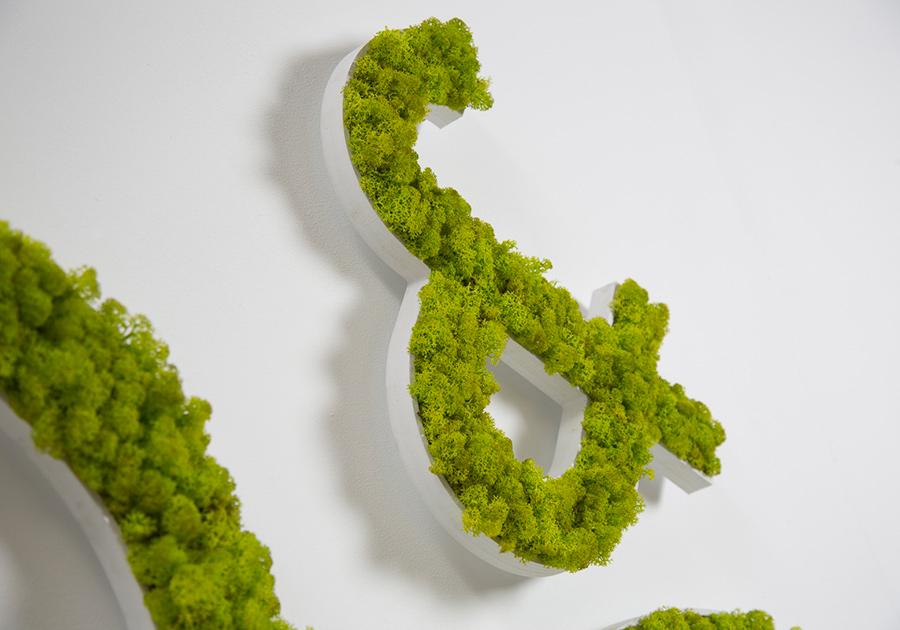 logo.vegetal.de.myfstudio.es